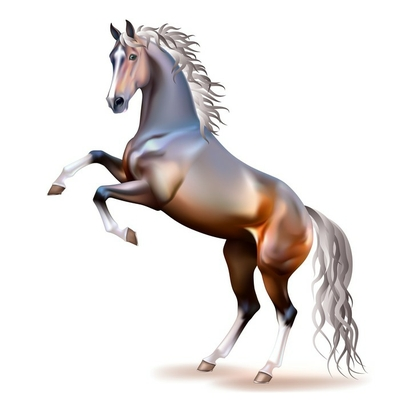 Vector photo-realistic bay horse rearing up isolated