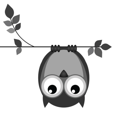 Upside down owl on a branch