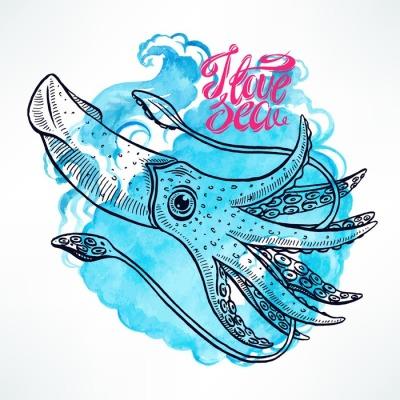 hand-drawn squid