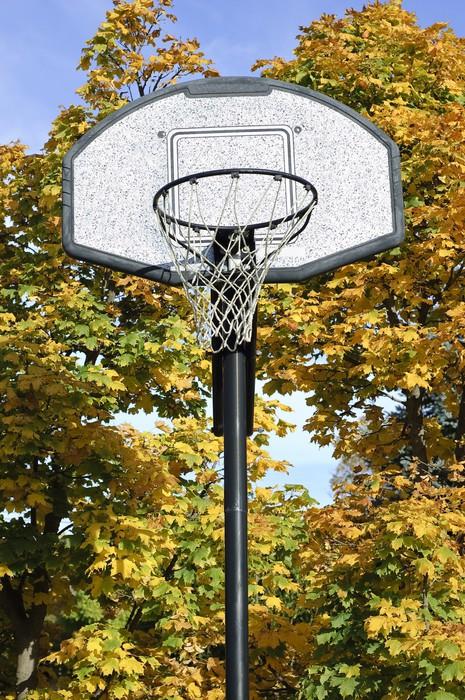 Papier Peint Vue De Face, Panier De Basket Avec Des Érables Jaune