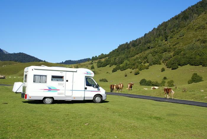 sticker camping car et chevaux pixers nous vivons. Black Bedroom Furniture Sets. Home Design Ideas