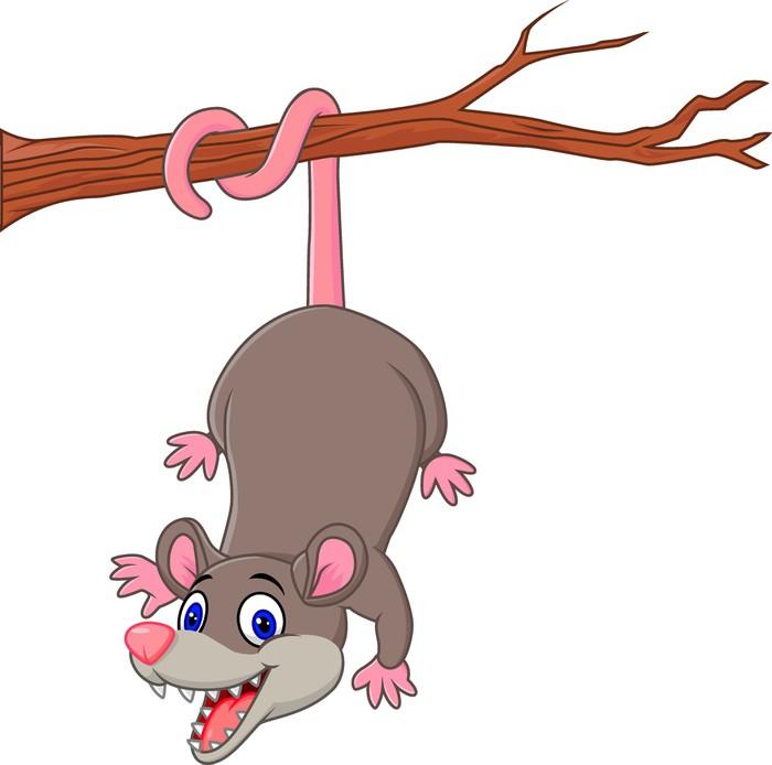 Fototapete Cartoon lustige Opossum auf einem Ast • Pixers® - Wir ...
