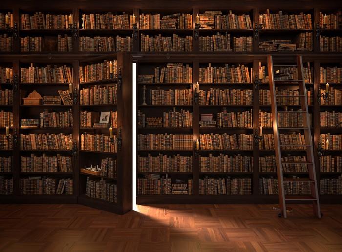 papier peint porte secr te dans la biblioth que biblioth que mysterious avec l 39 allumage des. Black Bedroom Furniture Sets. Home Design Ideas