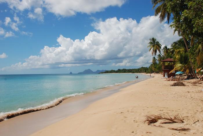 Vinylová fototapeta Martinik - plage des Salines - Vinylová fototapeta