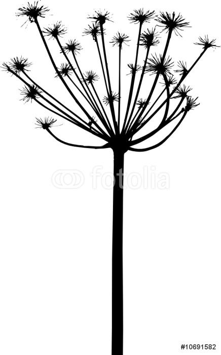 Vinylová Tapeta Vektorové rostliny siluety - Rostliny