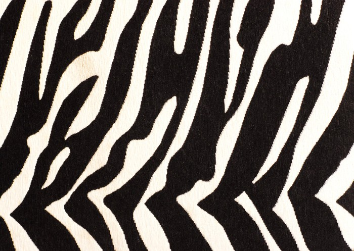 zebra print for background