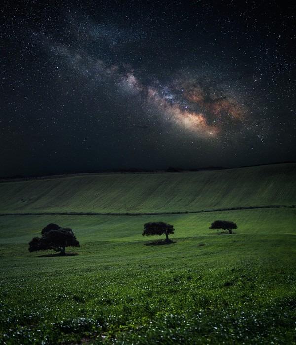 Vinylová Fototapeta Noc s úžasným Mléčné dráze nad zelené louce s třemi stromy - Vinylová Fototapeta