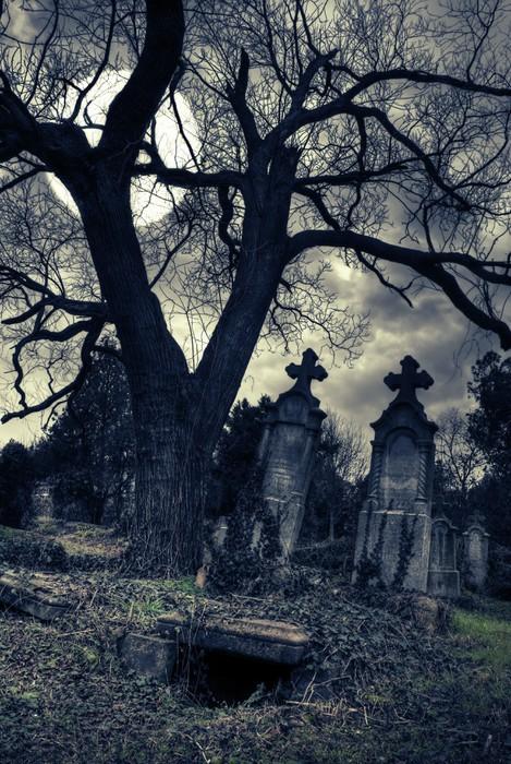 Fototapete Gothic-Szene mit geöffneten Grab • Pixers® - Wir leben ...
