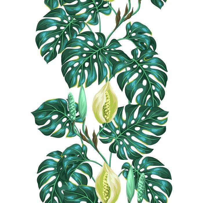 fototapete nahtlose muster mit monstera bl tter dekorative bild von tropischen pflanzen und. Black Bedroom Furniture Sets. Home Design Ideas