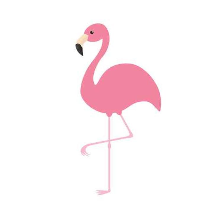 sticker flamant rose oiseau tropical exotique collection d 39 animaux zoo personnage de dessin. Black Bedroom Furniture Sets. Home Design Ideas