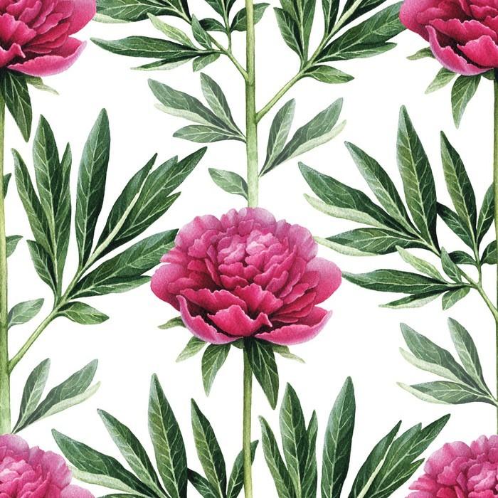 Sticker aquarelle fleurs de pivoine illustration seamless for Aquarelle fleurs livraison gratuite
