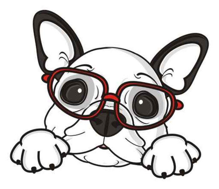 Carta da parati bicchieri cane francese bulldog razza