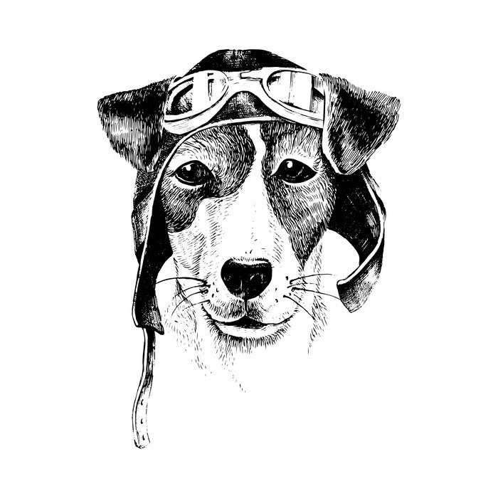 tableau sur toile hand drawn habill aviateur chien pixers nous vivons pour changer. Black Bedroom Furniture Sets. Home Design Ideas