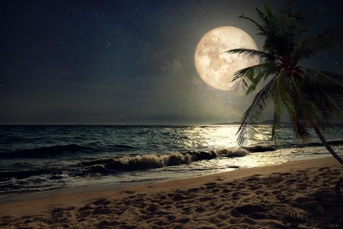 fototapete sch ne fantasy tropischen strand mit. Black Bedroom Furniture Sets. Home Design Ideas