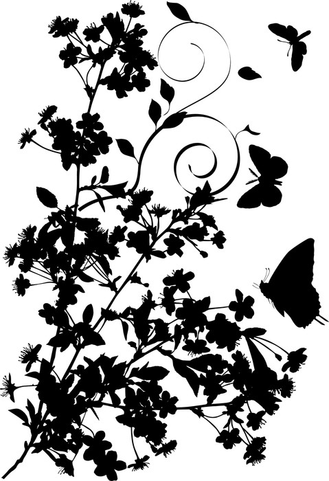 Vinylová Tapeta Motýli a třešeň květiny silueta - Květiny