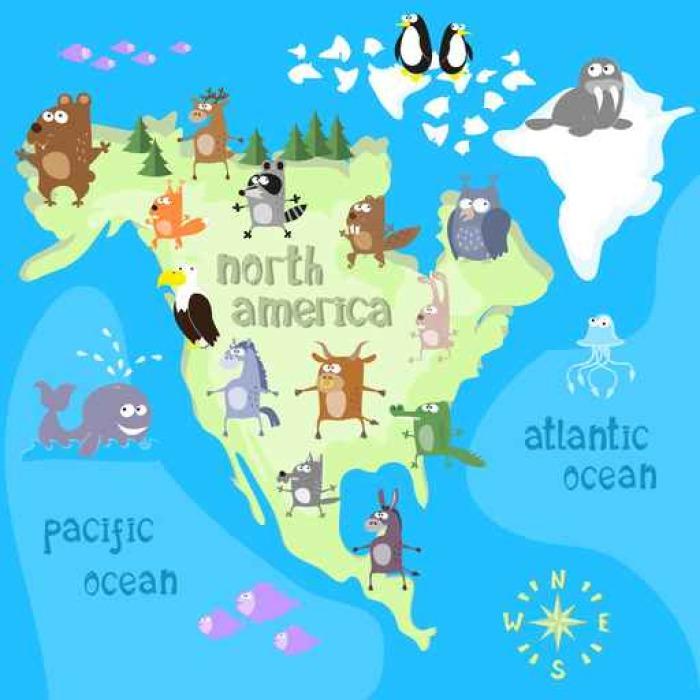 Carta da parati concept design mappa del continente nord