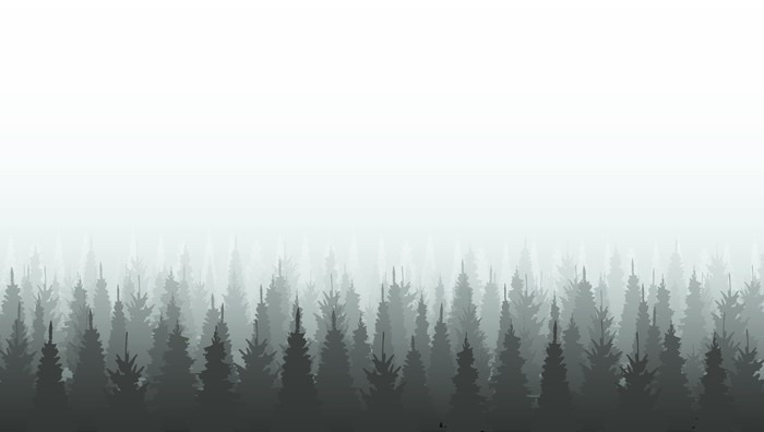 coniferous forest silhouette template woods illustration sticker