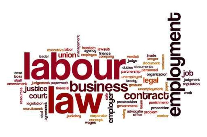 what is contract labour Why have an employment contract an employer must provide an employee with their employment terms, (known as a statement of terms) within two months of the employee's start date that is why an employment contract is much better for both employers and employees.