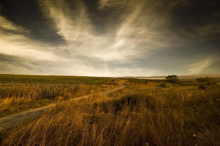 Vinylová Tapeta Prázdné pole a dramatické nebe - Venkov