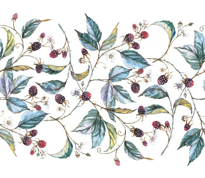 Hand-drawn watercolor seamless ornament with natural motives: blackberry branches, leaves and berries. Repeated decorative illustration, border with berries and leaves Vinyl Wall Mural -