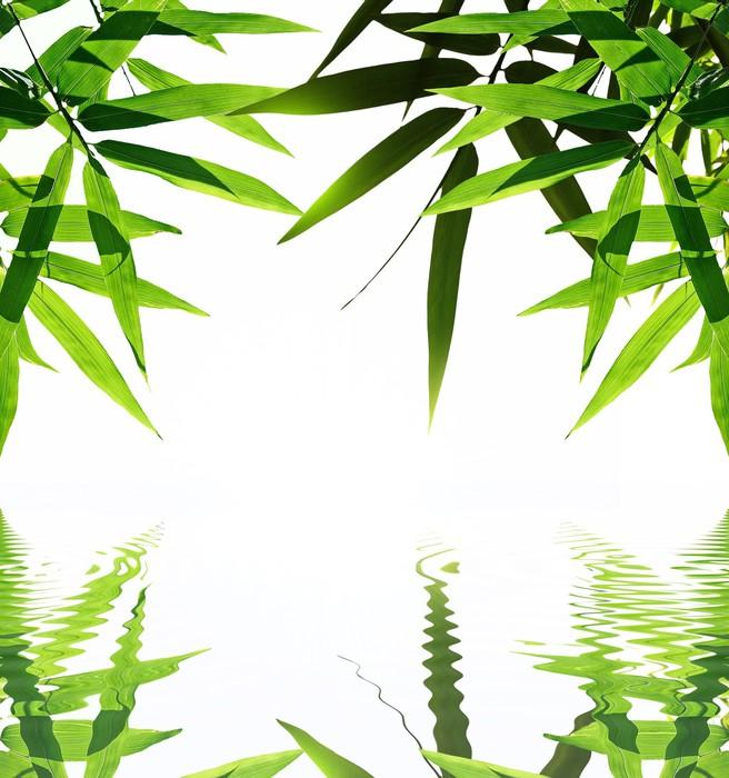 tableau sur toile bambou avec reflet dans l 39 eau ambiance zen pixers nous vivons pour changer. Black Bedroom Furniture Sets. Home Design Ideas