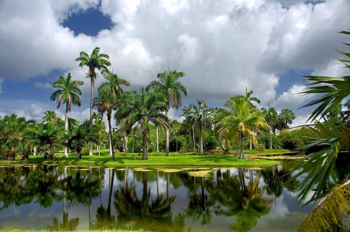 Vinylová Tapeta Fairchild tropické botanické zahrady, FL, USA - Amerika