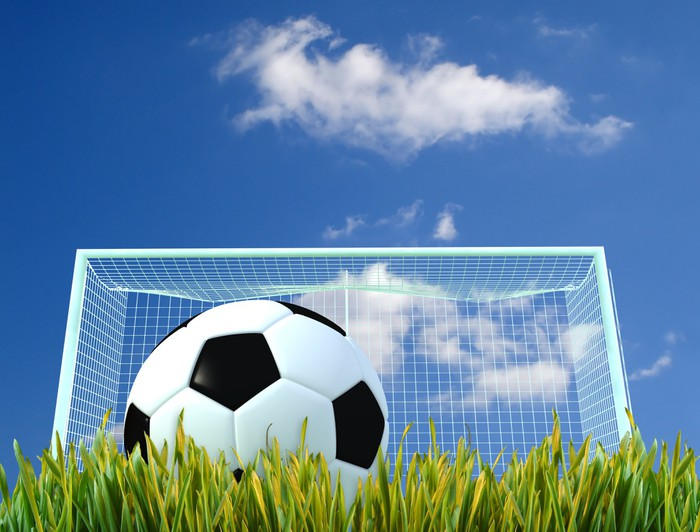 Soccer Ball And Door On A Grass Field Wall Mural   Vinyl   Team Sports Part 95