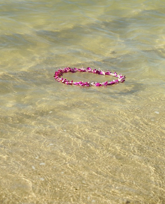 Vinylová Tapeta Květiny věnec plovoucí ve vlnách - Voda