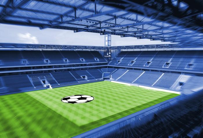 Vinylová Tapeta Fotbalový stadion se zelenou trávou - Úspěch