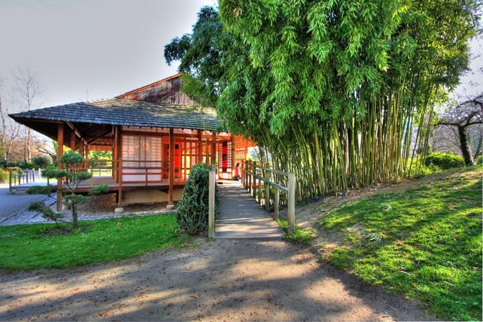 Papier peint vinyle Jardin japonais - Bâtiments publics