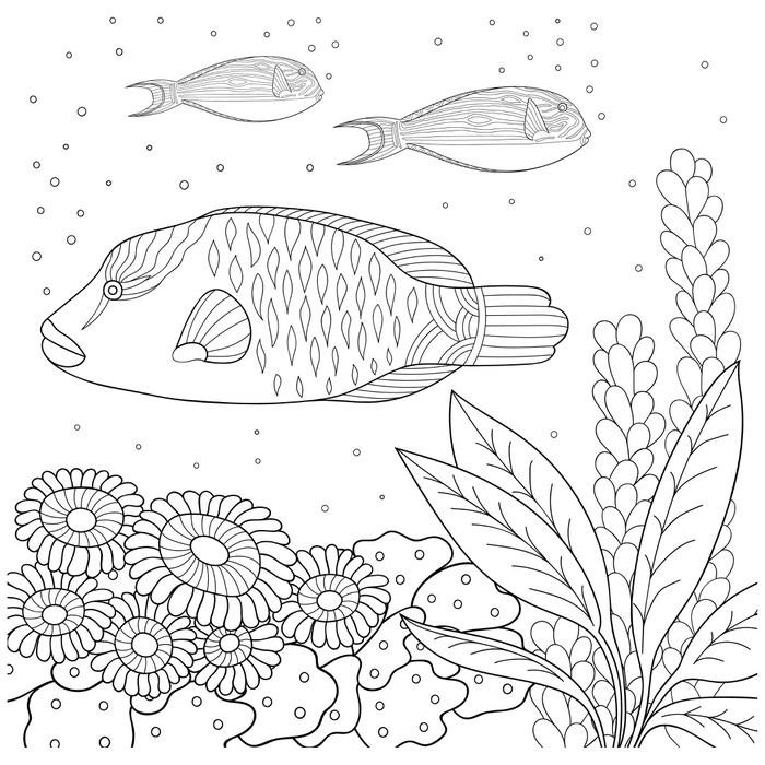 Fototapete Doodle Muster in schwarz und weiß. Marine-Muster für ...