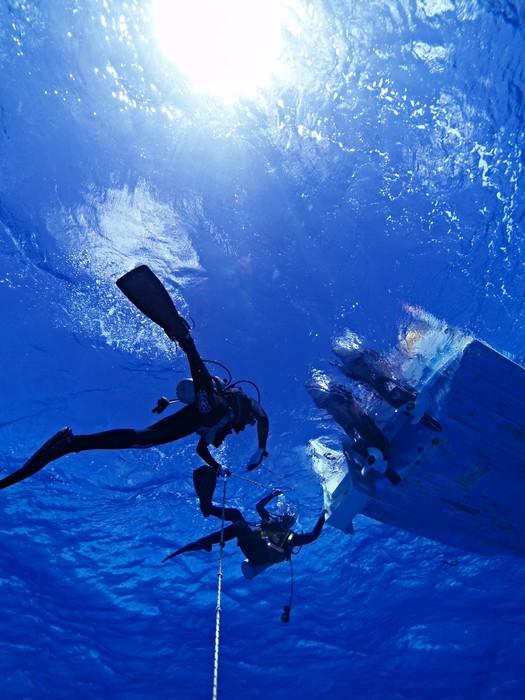 Vinyl-Fototapete 透明 な 青 - Wassersport