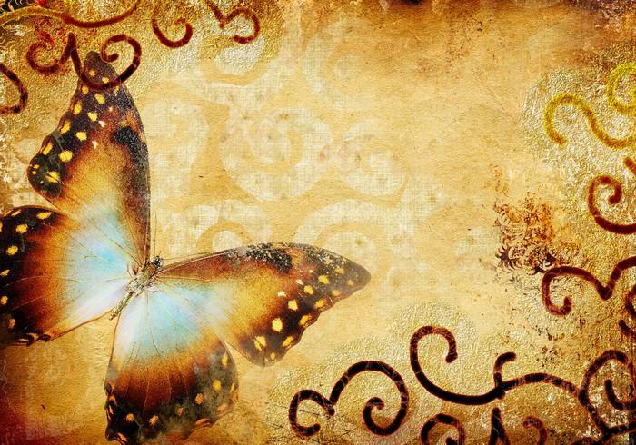 Vinylová Tapeta Vintage pozadí s butterfly - Surové materiály
