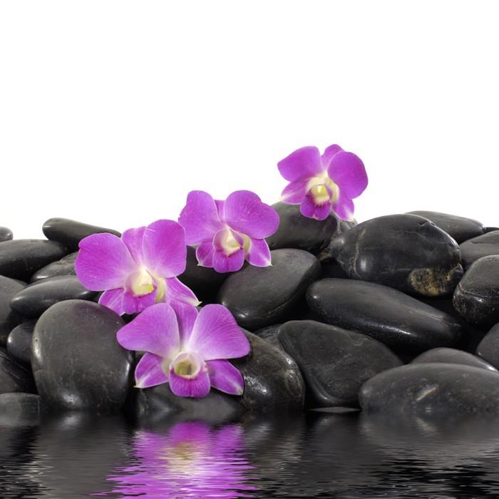 fototapete lila orchidee und schwarze steine mit reflexion. Black Bedroom Furniture Sets. Home Design Ideas