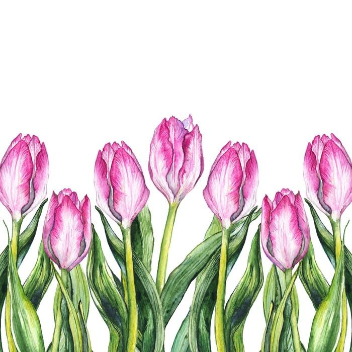 Mural De Parede Aguarela Rosa Tulipa Flor Quadro Da Beira Da