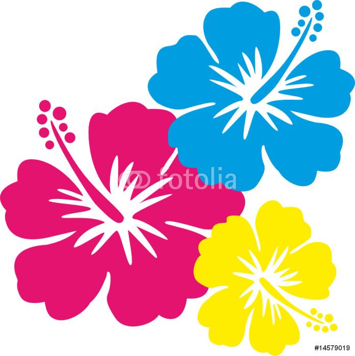 Hawaiiblumen pink, blau, gelb