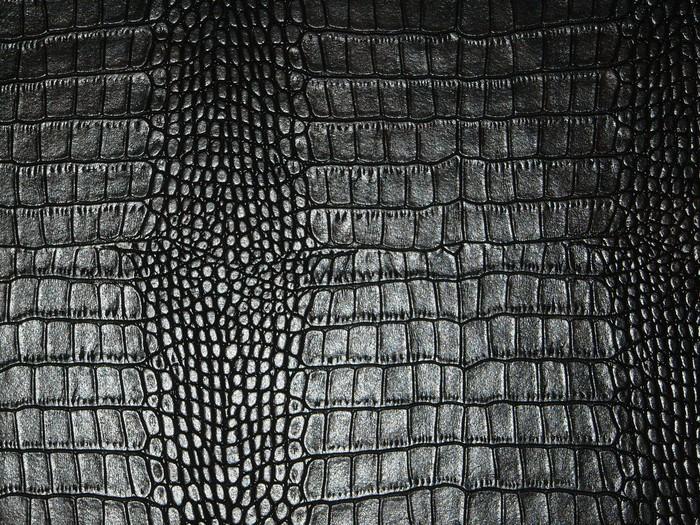 papier peint peau de serpent pixers nous vivons pour