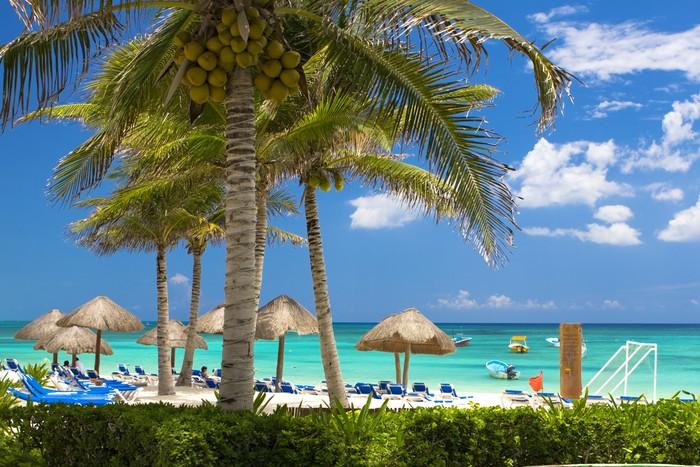 Vinylová Tapeta Tropical Beach - Voda