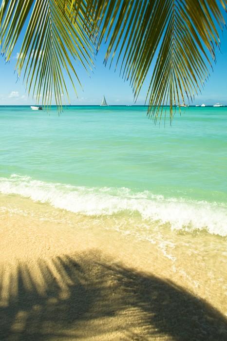 Vinylová Tapeta Tropická pláž - Voda