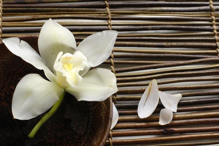 fototapete sch ssel orchidee bl tenblatt auf bambusmatte. Black Bedroom Furniture Sets. Home Design Ideas