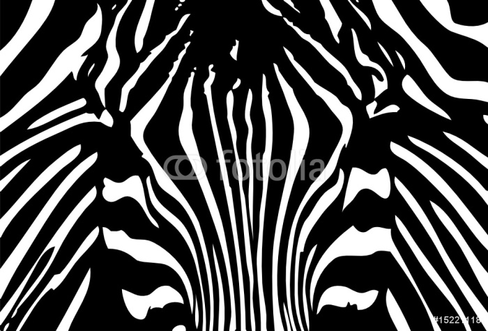vector - black and white zebra background