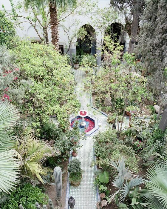 Vinylová Tapeta Garten Eden - Afrika