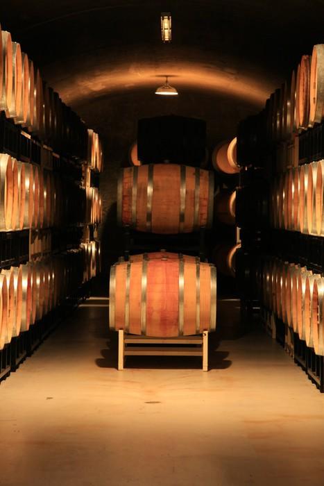 Vinylová Tapeta Wine cellar - Alkohol