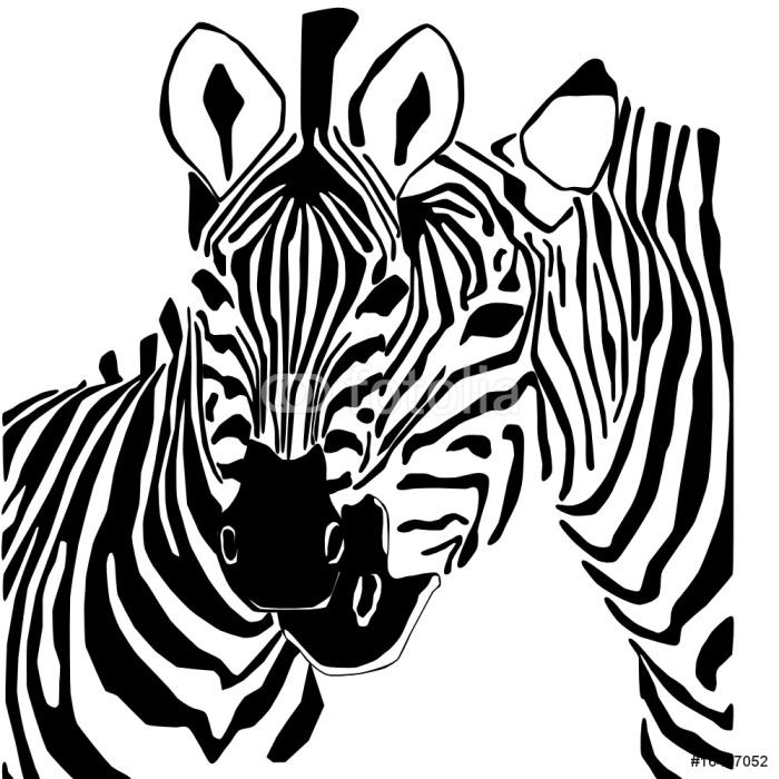 Black And White Zebra Portrait Sticker - Pixerstick - Mammals