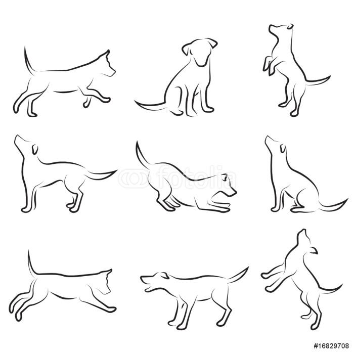 Zestaw rysunek psa
