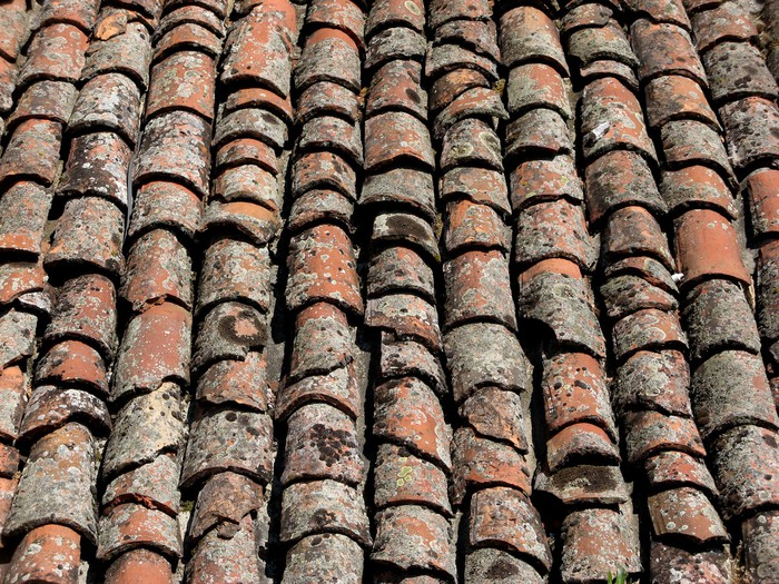 Carta da parati vecchio tetto piastrelle sfondo u2022 pixers® viviamo