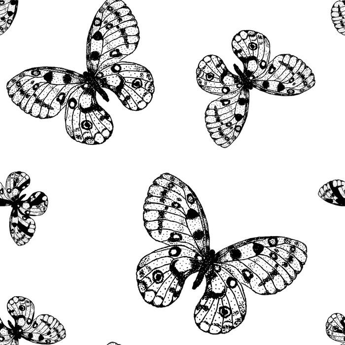 Vinilo para Armario Vector sin patrón de mariposa blanco y negro ...