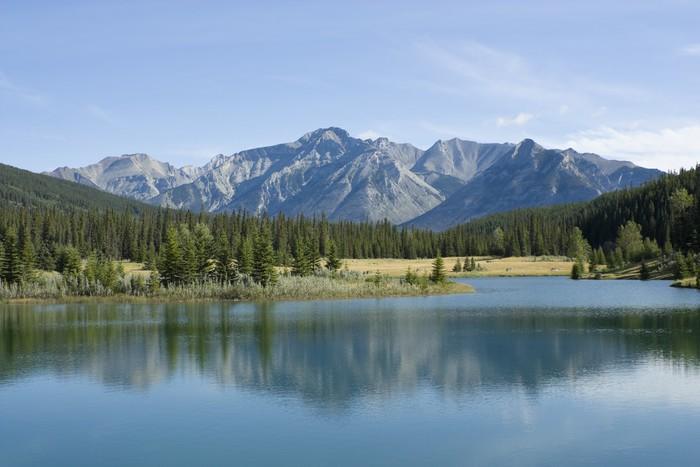Banff National Park Cascade Pond Vinyl Wallpaper - Mountains