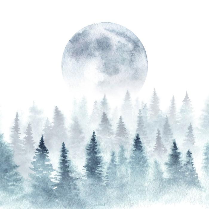 Sticker paysage d 39 une for t d 39 hiver et lune montante les - Lune montante et descendante ...