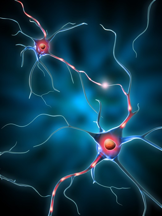 Vinylová Tapeta Neuronová síť - Zdraví a medicína
